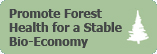 Promote Forest Health for a Stable Bio-Economy